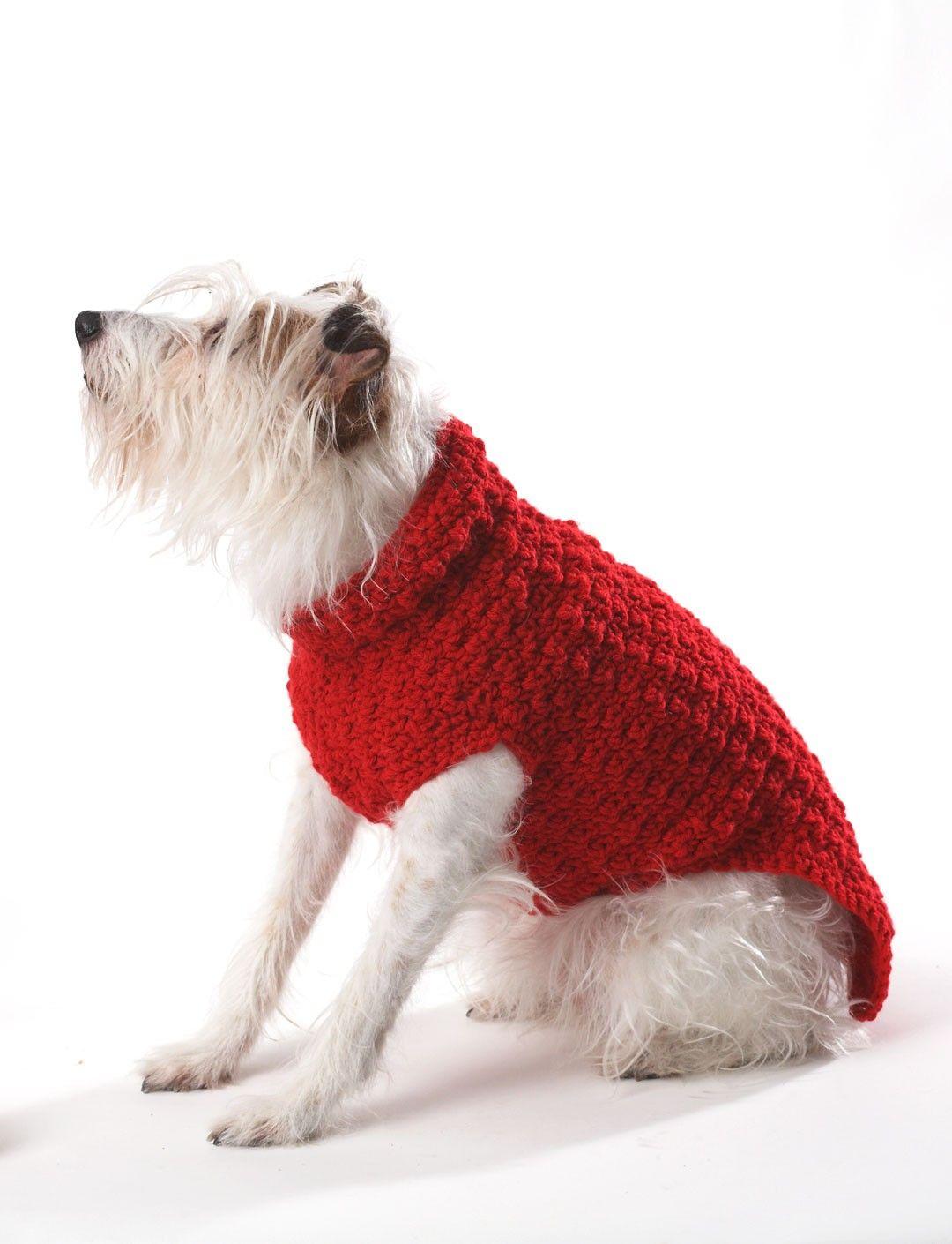 Crochet Dog Coat - Crochet Patterns - Patterns | Yarnspirations ...