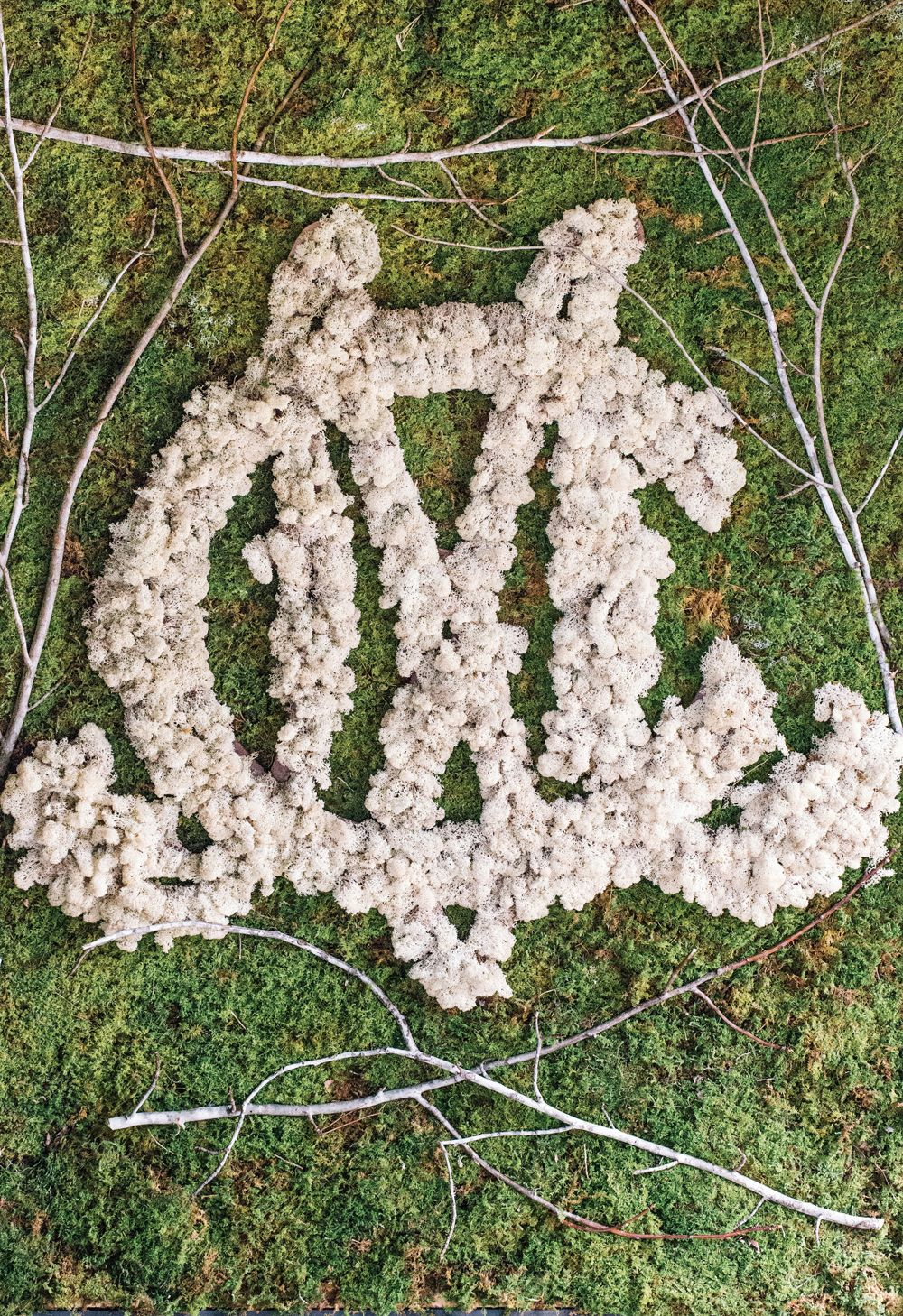 Wedding Monogram In White Flowers On A Panel Of Moss By Uncut