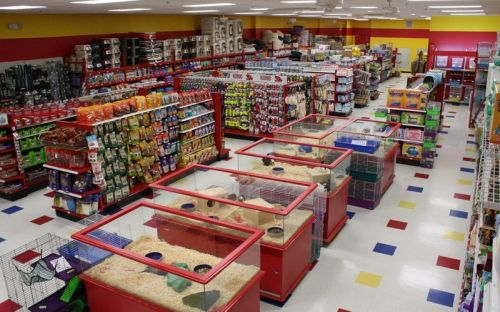 inside Ren's pet depot Google Search Pet store design
