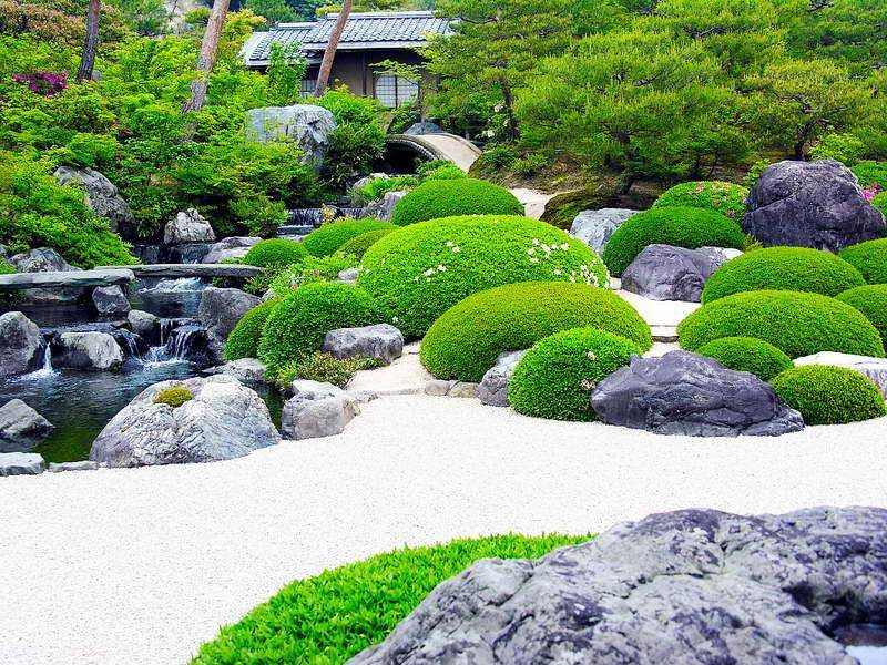 Garden And Lawn , The Variety Of Japanese Garden Plants