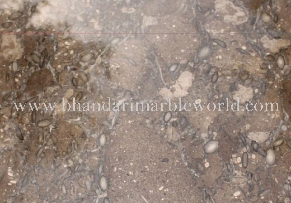 OLIVE BROWN MARBLE Italian marble, Marble price, Italian