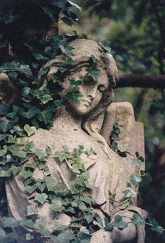 Highgate E Angel in ivy 4 #overgrownaesthetic
