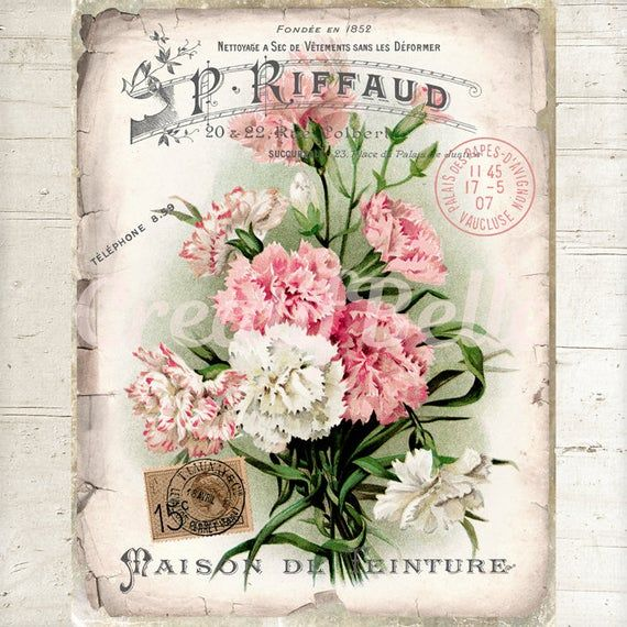 Photo of French Style Vintage Antique Pink Carnations Instant Digital Download Printable Graphic Transfer Image 1268