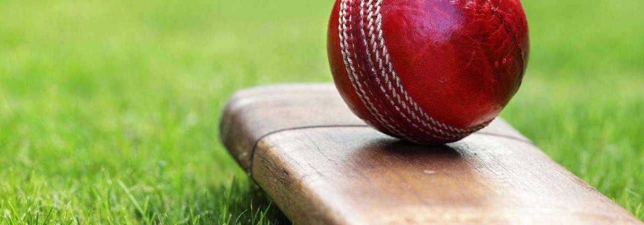 Cricket API FREE High Volume Cricket balls, Cricket in