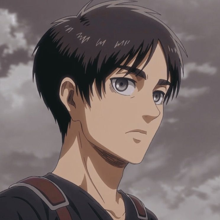 eren yeager aesthetic icon | Attack on titan eren, Attack on titan  aesthetic, Attack on titan anime