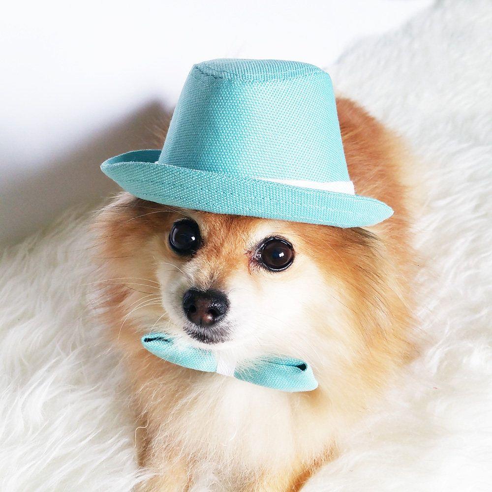 Fedora For Dogs Cats Handmade Dog Hats Dog Caps Summer Etsy Handmade Dog Dog Hats Pet Accessories