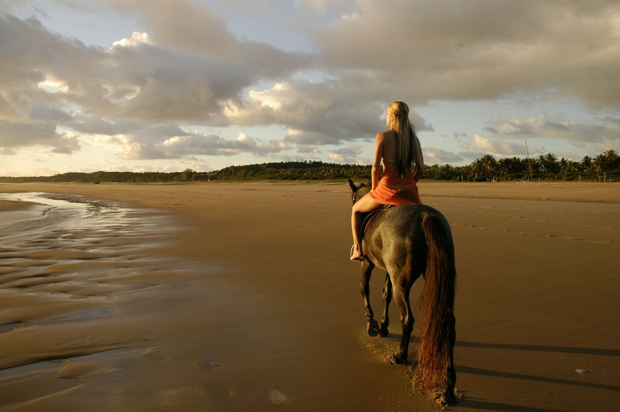Romantic Horse Rides Along The Beach Visit Www Mozambique Co Za Trail Riding Horse Riding Riding