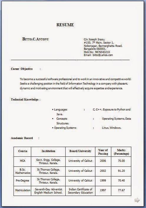 how to make biodata for job Sample Template Example of ExcellentCV