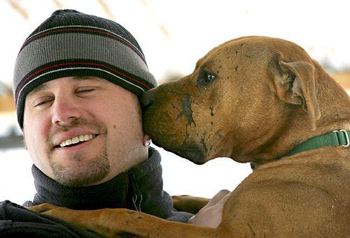 Vick S Dogs Find Hope In Utah Animal Society Animal Sanctuary Dogs