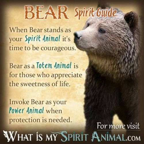 Pin By Elizabeth On Spirit Animals Pinterest Bears Totems And