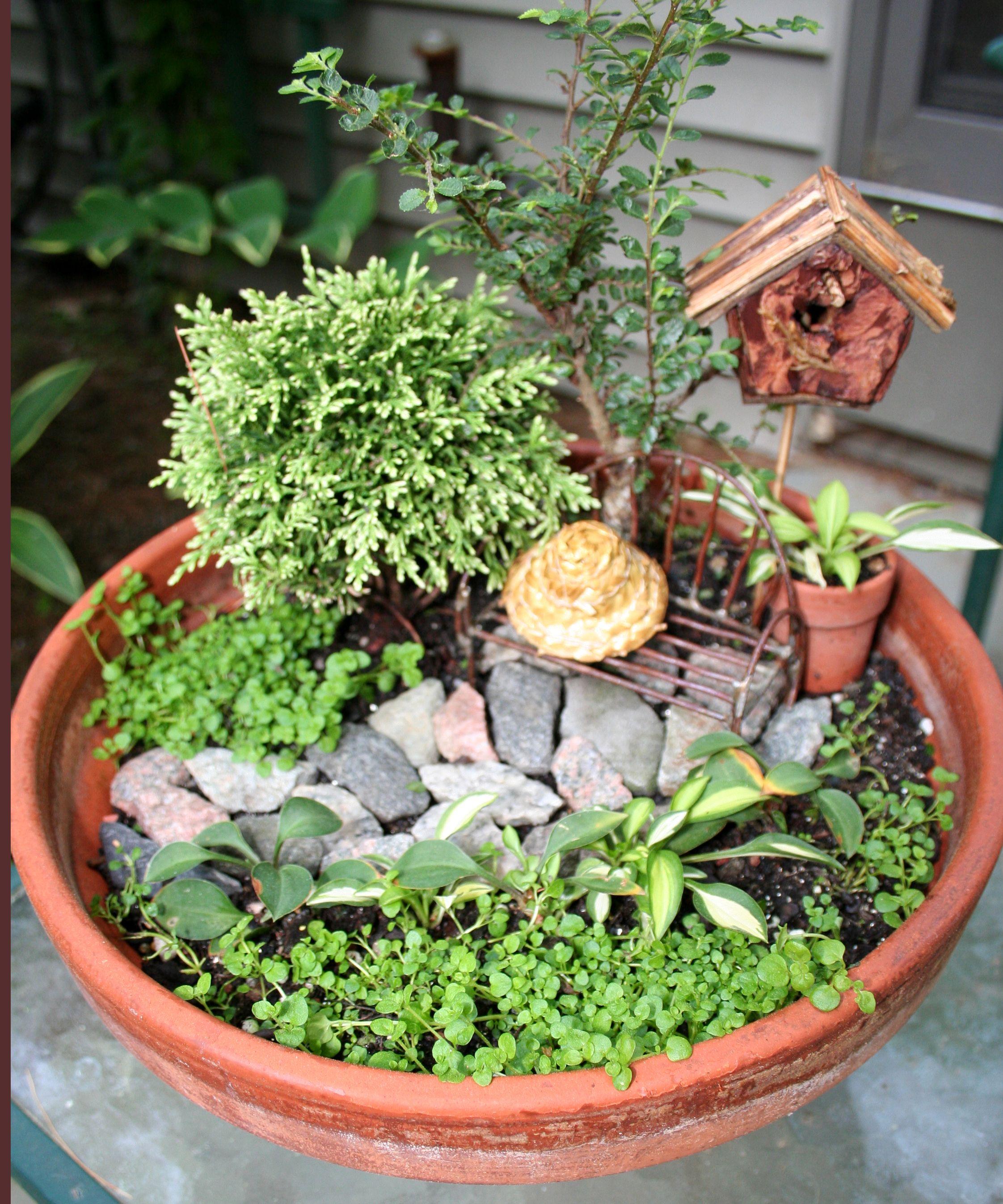 Dish Garden | Pixie Dust | Pinterest | Dish Garden, Dishes And Gardens.