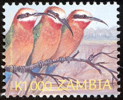 White-fronted Bee-eater stamps - mainly images - gallery format