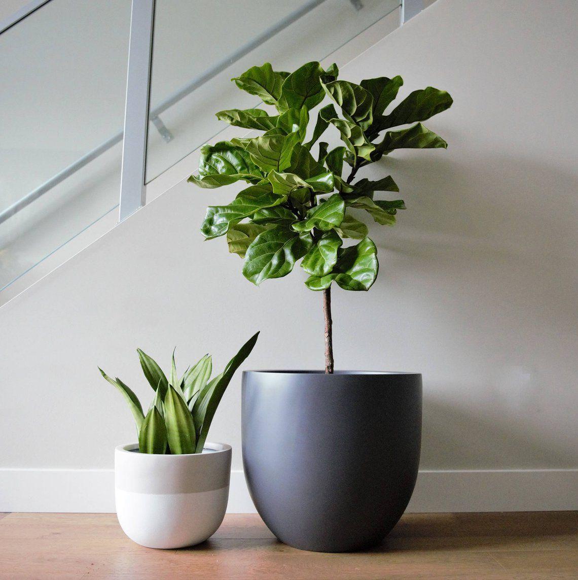 Matte Grey Planter Pot Indoor Outdoor Modern Lightweight