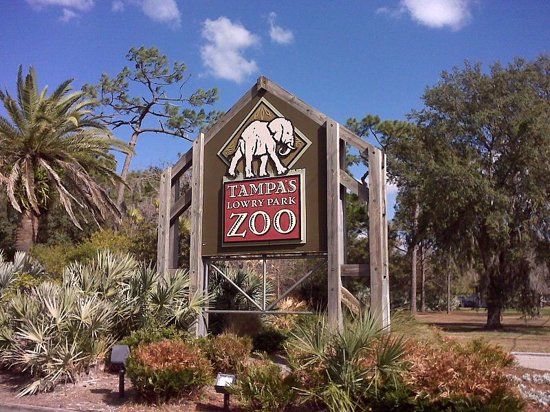 Tampa S Lowry Park Zoo Tampa Zoo Tampa Florida Florida Travel Guide