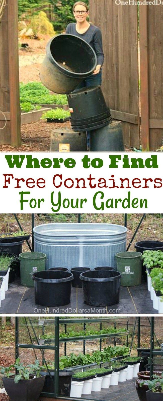How To Find Free Containers For Your Garden One Hundred Dollars A Month Container Gardening Vegetables Garden Containers Recycled Garden
