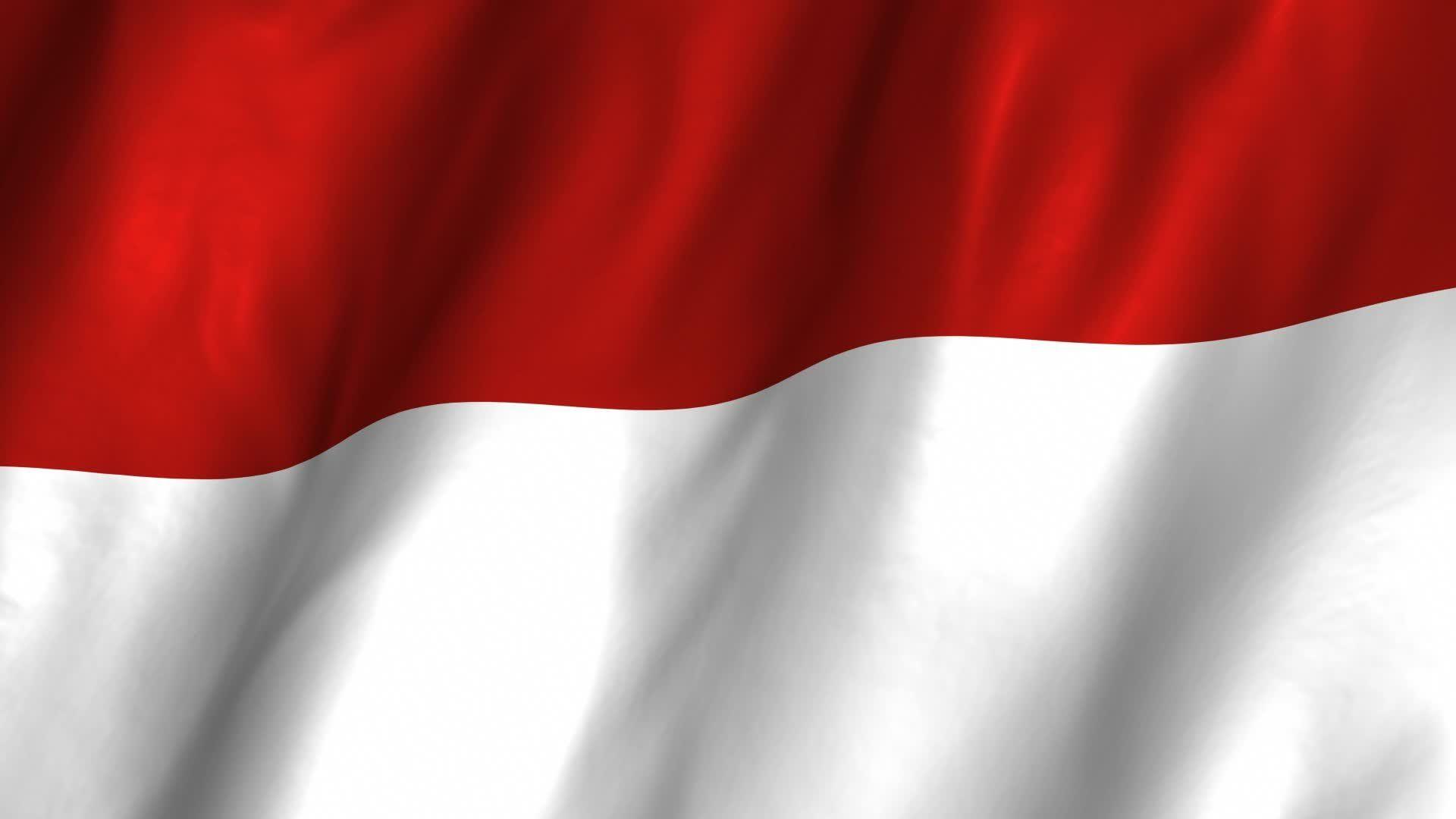 Indonesian Flag Bendera Indonesia Desain Banner