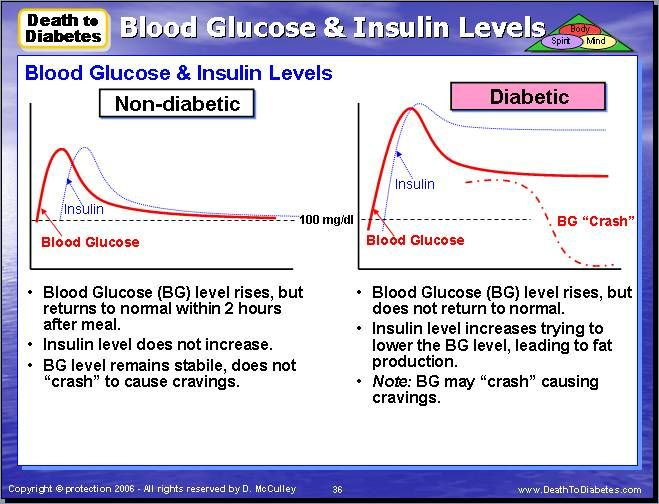 Blood Glucose Bg Insulin Levels Chart Comparison Between A Diabetic And Non