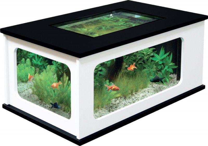 Les 25 meilleures id es de la cat gorie aquarium table for Aquarium en solde