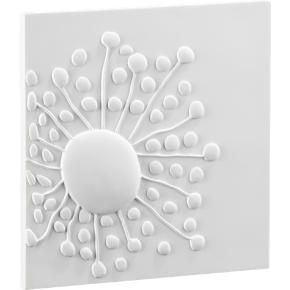 floral wall art shopping in cb2 wall dcor from cb2com - White Wall Decor
