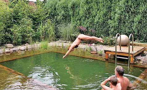 17 best ideas about schwimmteich anlegen on pinterest, Garten Ideen