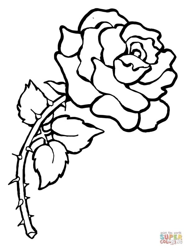 Roses Coloring Pages Free Coloring Pages coloring page of a rose ad9 ...