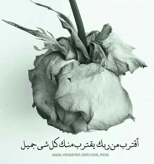 ما أجمل الحياة في القرب من الله Animals Allah