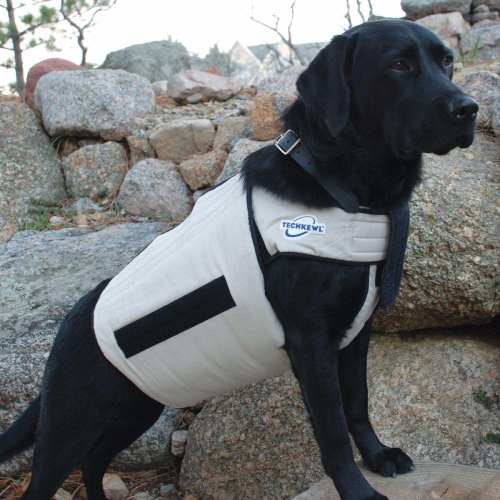 Techkewl Cooling Vest Cooling Vest Dog Cooling Vest Dog Vest