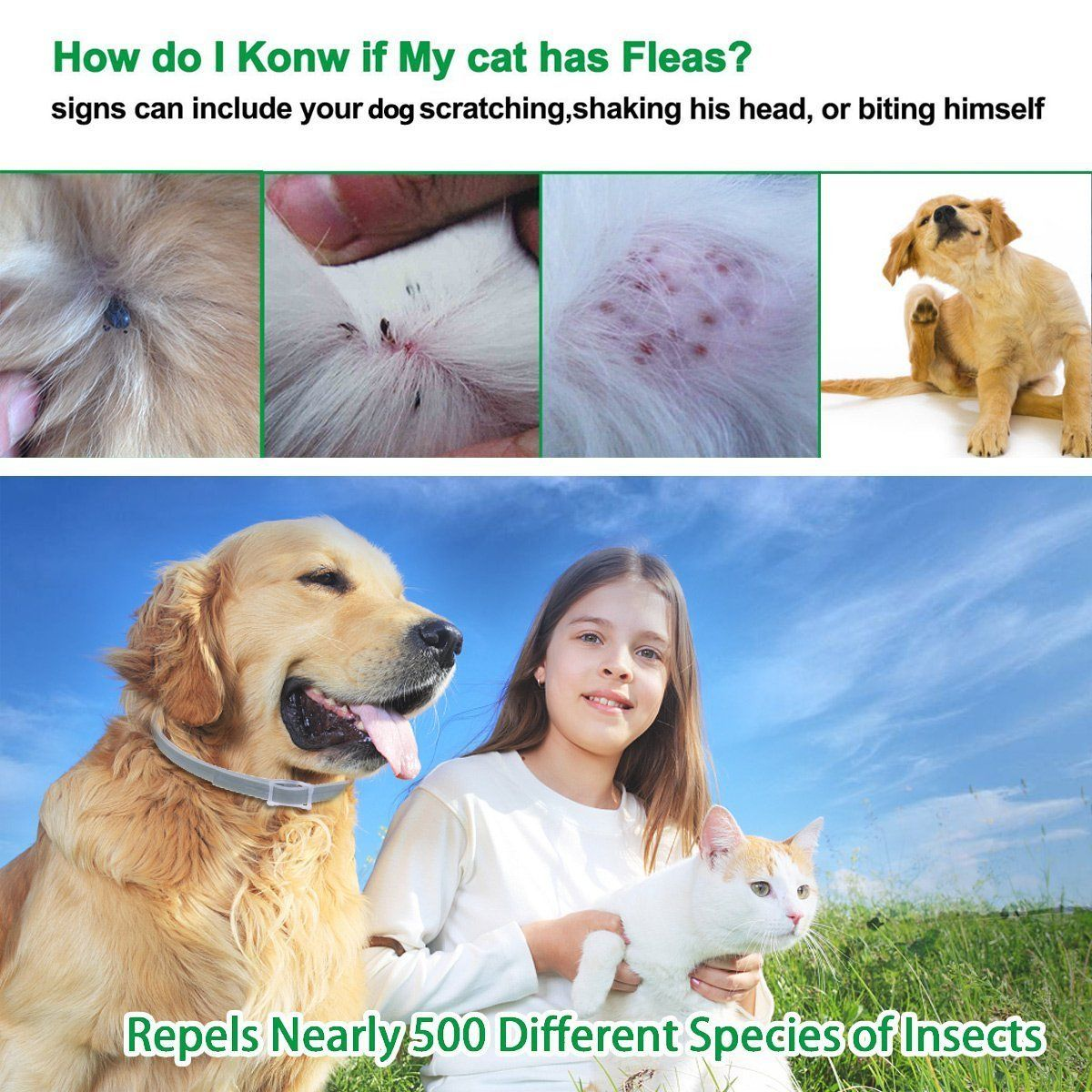 Tritust Flea and Tick Prevention for Dogs Cats 24 Inches