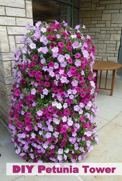 How To Make A Petunia Tower Flower Tower Plants Flower