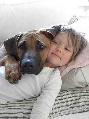 best friends 4ever Rhodesian Ridgeback Spaniel Terrier Dog Photography Puppy Hounds Chien Puppies Pup