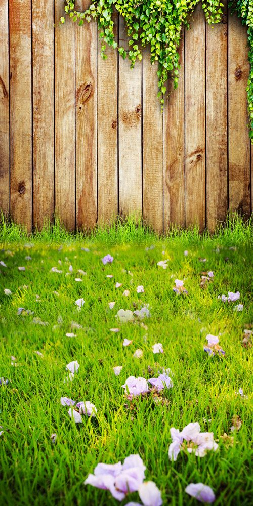 wood wall Photography Backdrop-green grass photography Background ...