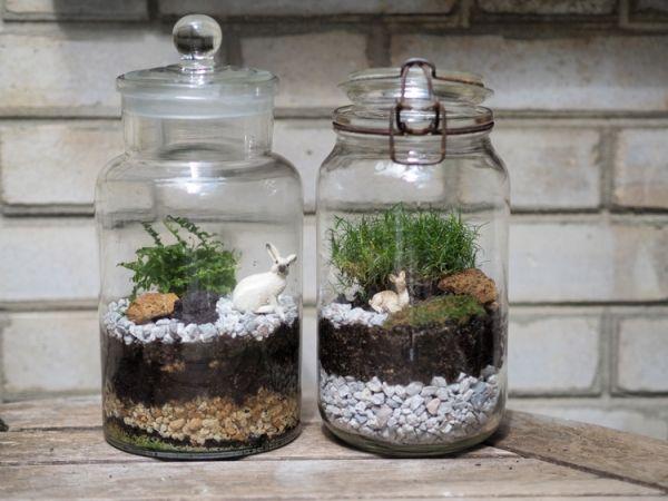 Diy Comment Fabriquer Son Terrarium Glass Gardens Pinterest