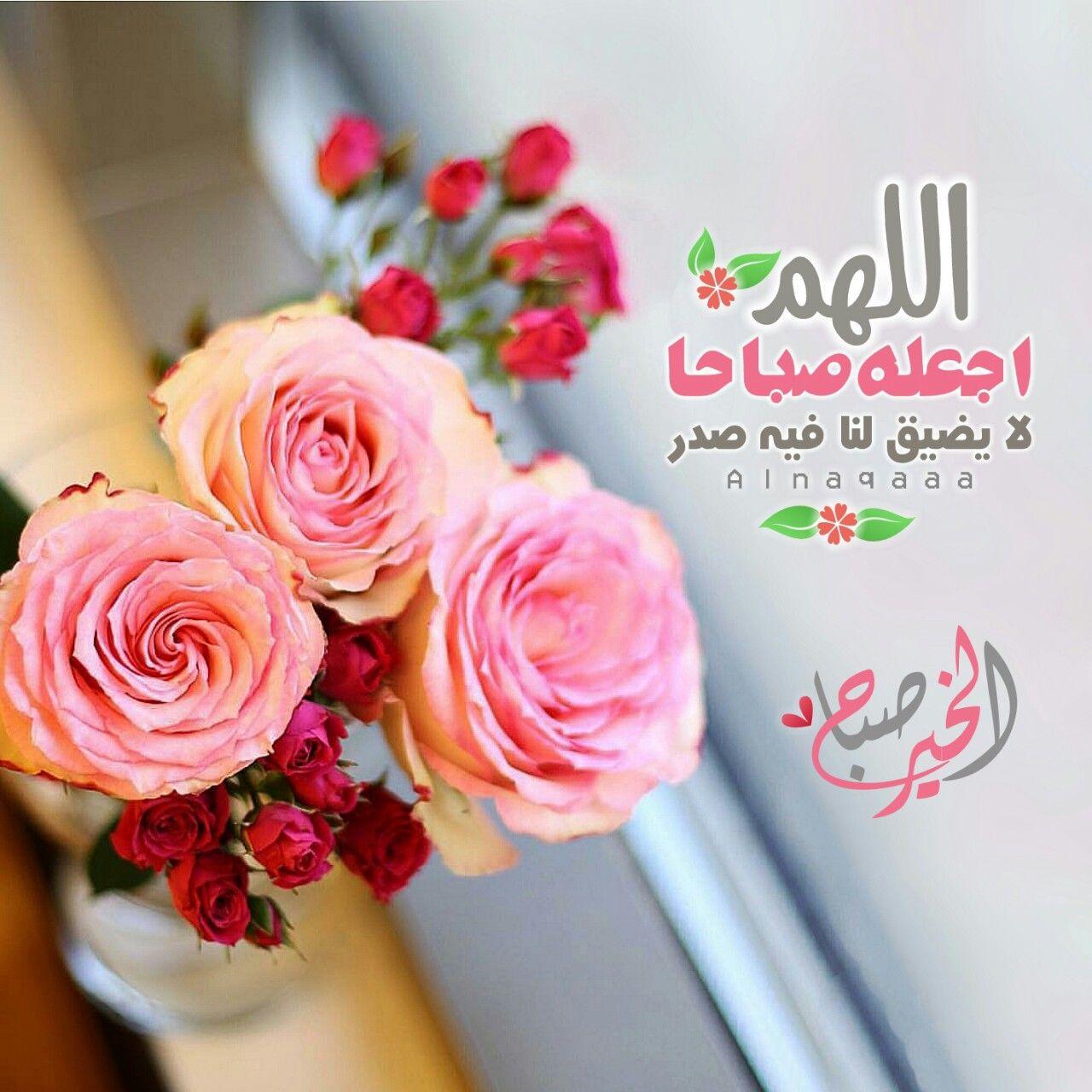 مسلمة وكل ما انشره من تصميمي Photo Good Morning Flowers Good Evening Wishes Good Night Messages