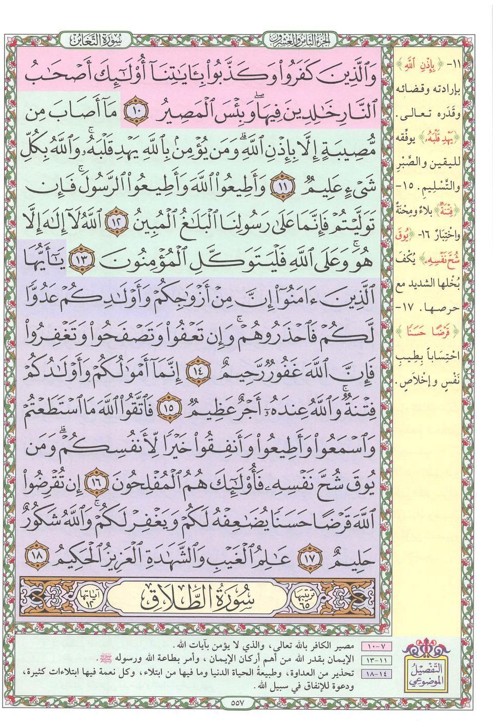 ١٠ ١٨ التغابن Holy Quran Book Bullet Journal Quran Book