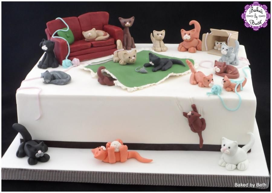 Crazy Cat Lady Cake By Bakedbybeth Cakes Pinterest Cake