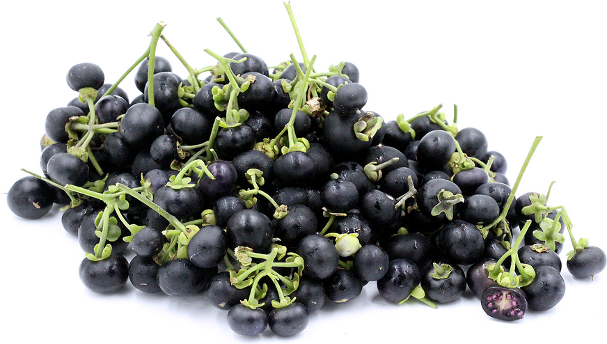 The Wonderberry is a bushy plant that typically reaches 60