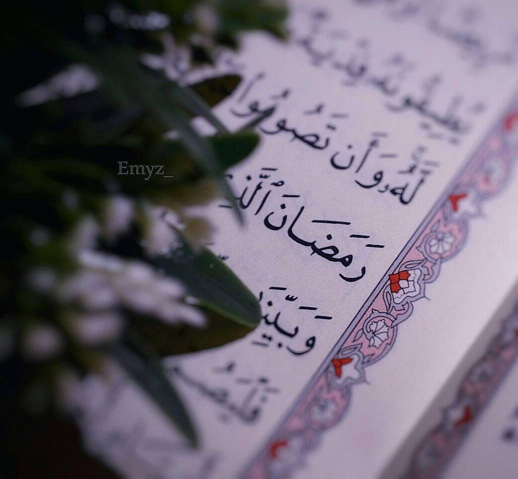 No Photo Description Available Arabic Calligraphy Photo Art