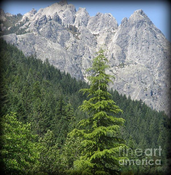 Castle Crags in Northern California. Photo being sold on Fine Art America and eventually, Etsy.