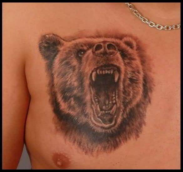 что означает картинка медведя захотите воспользоваться сторонними
