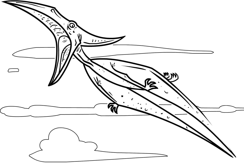 Pteranodon Coloring Page
