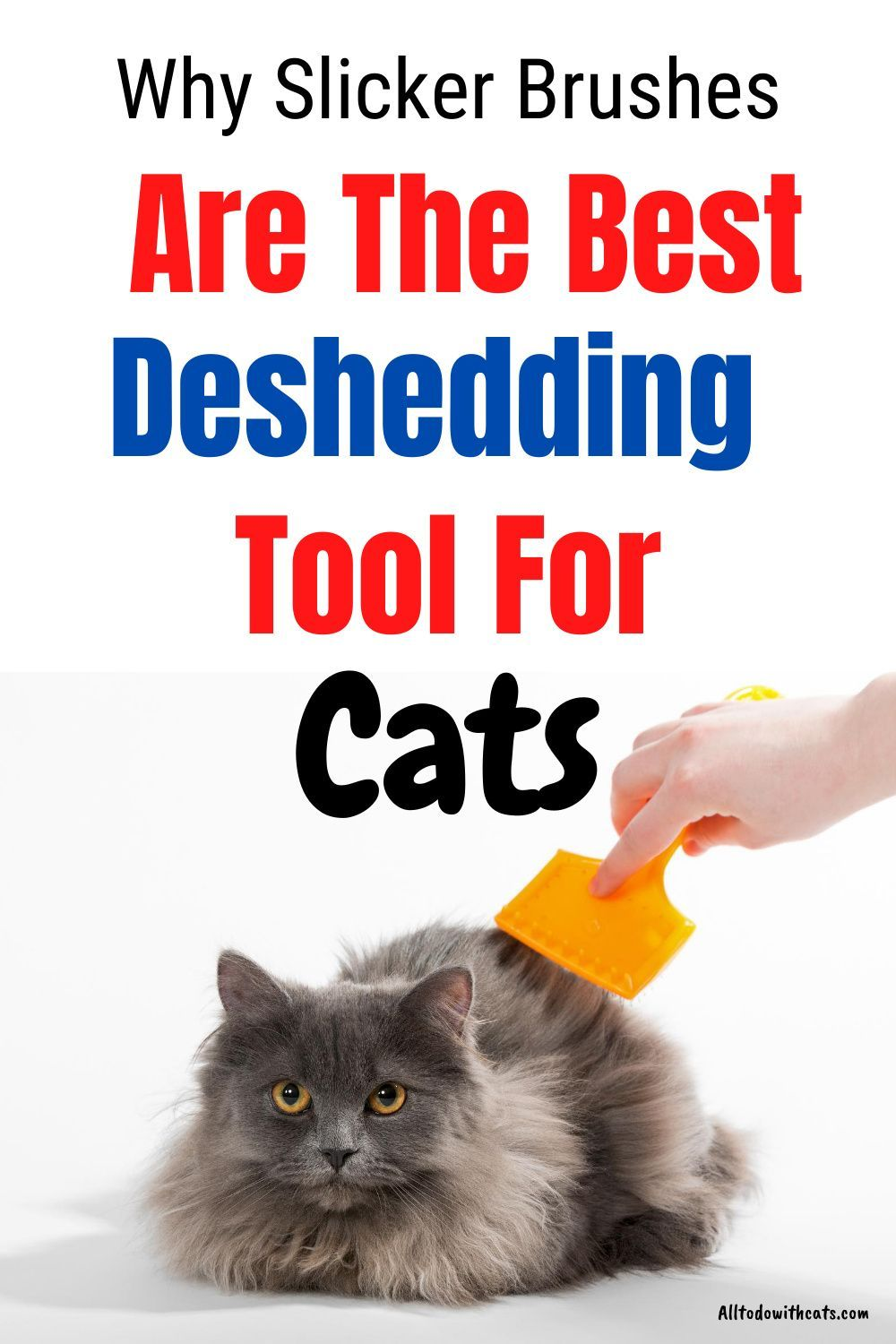 b67a73adf7d84eaf7000ba4e0252e0e4 - How To Get Knots Out Of A Long Haired Cat