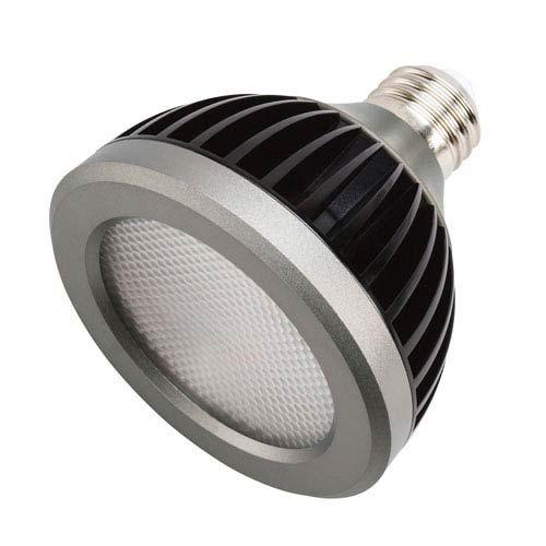 Kichler Clear Line Voltage 13 Watt 2700 Kelvin 25 Degree Landscape Par30 Pack Of 2 18087 In 2020 Led Replacement Bulbs Light Bulb Led Globe Lights