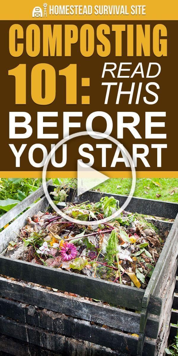 Compost is the product that you get out of composting  a material that you can as fertilizer in the garden as feed for your chickens and to build up the soil structure on...