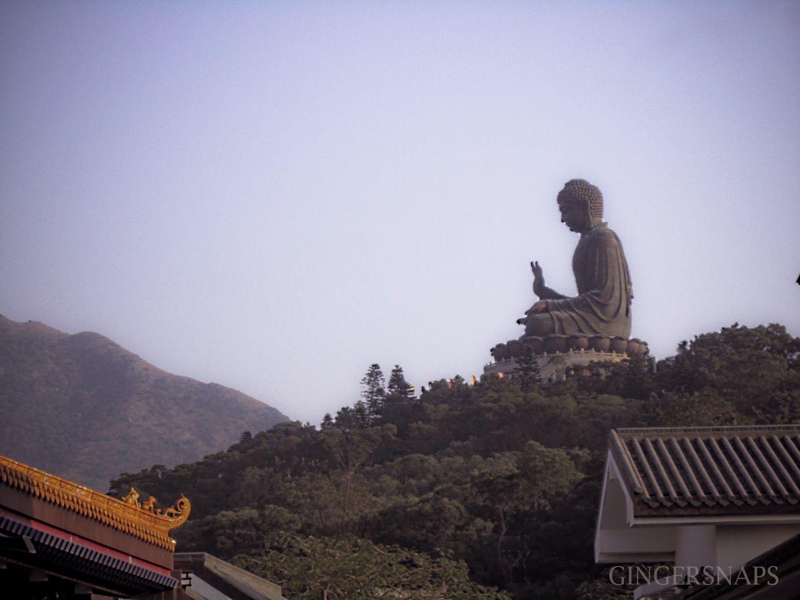 Tian Tan Buddha, Hongkong  #Travel