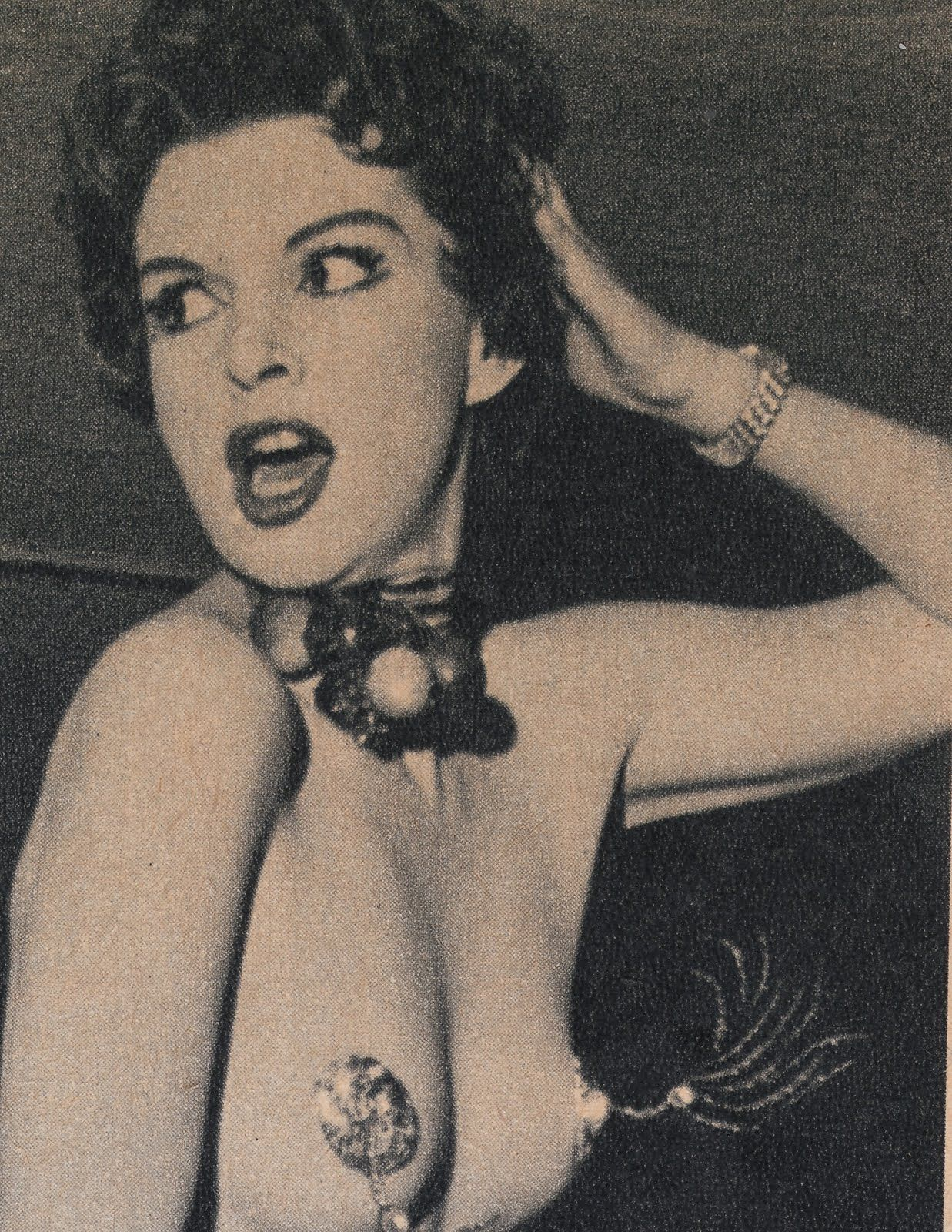 Vintage sleaze adult stars catalogs