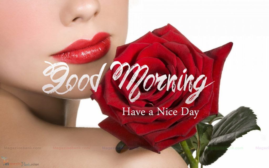 good morning images with red rose hd wallpaper full morning
