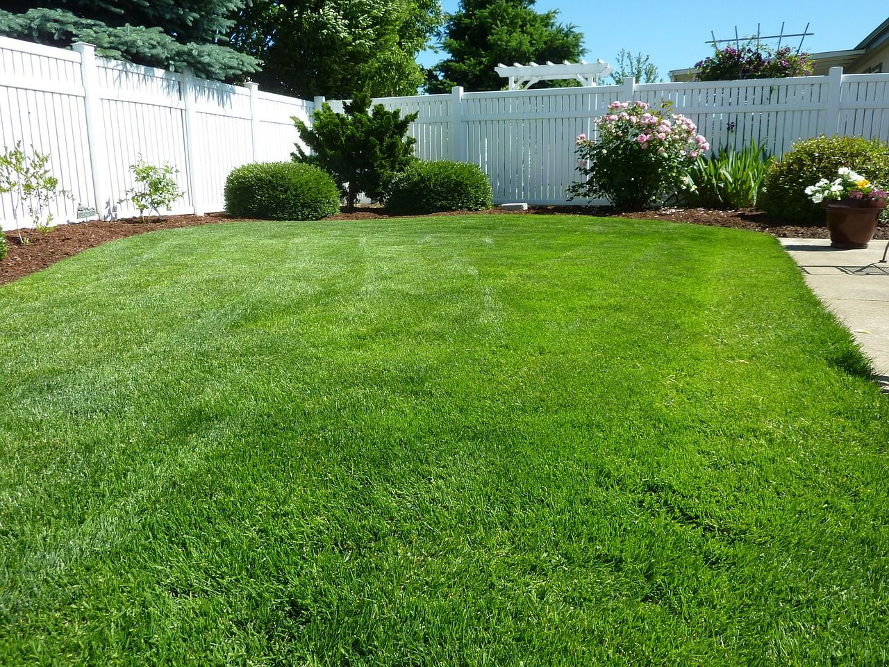 How To Prepare Soil For Sod Backyard Landscaping Backyard