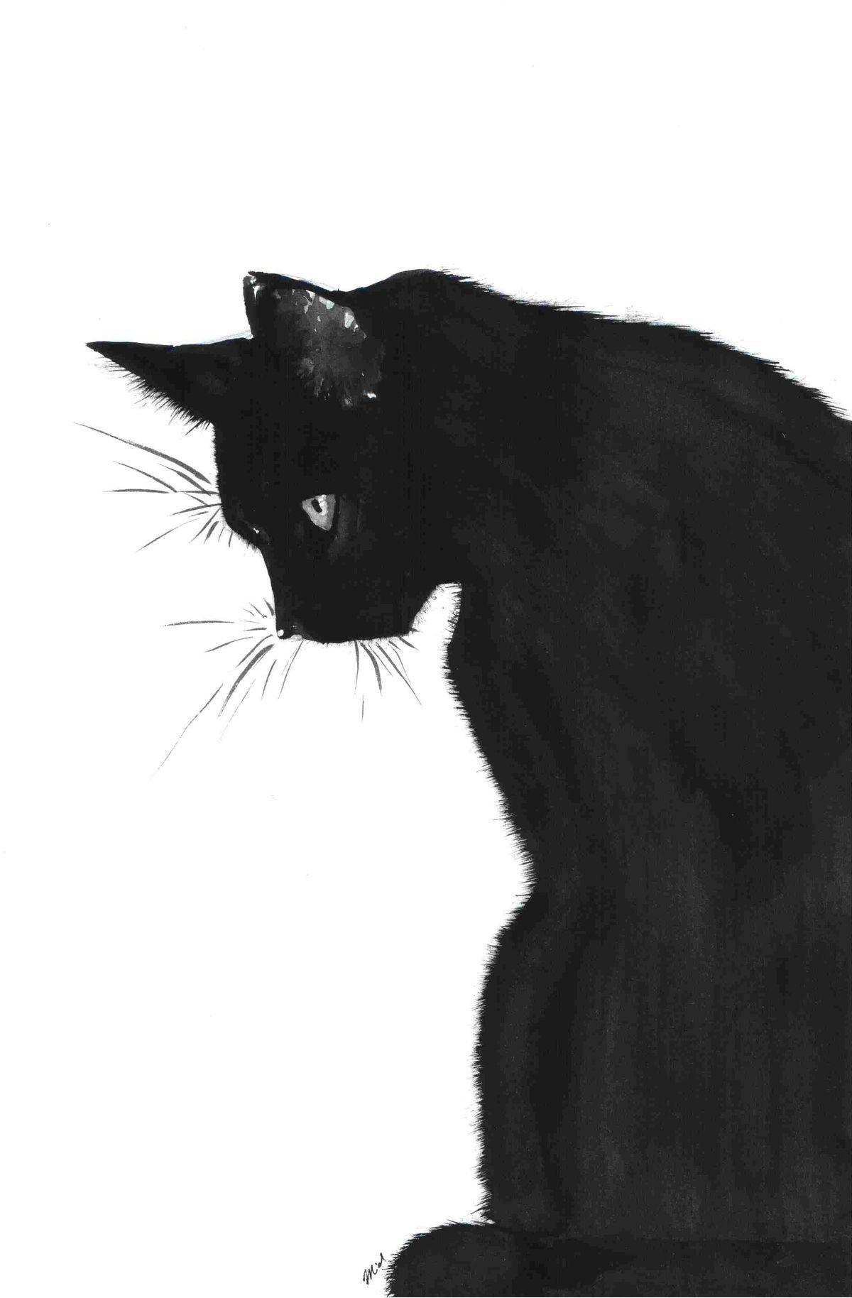Gato Preto Wallpapers Desenhos De Gatos Gatos Gatinho Desenho