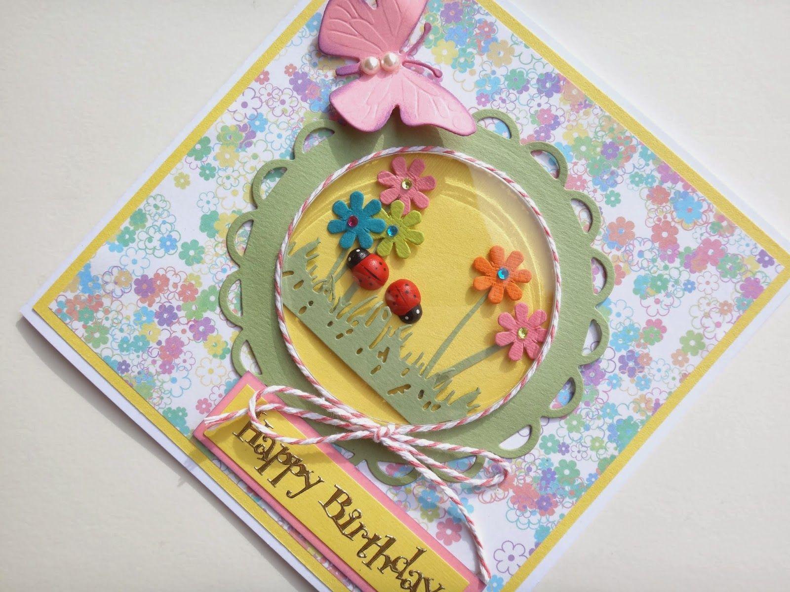 Ladybird And Flowers Shaker Card Birthday Cards Pinterest