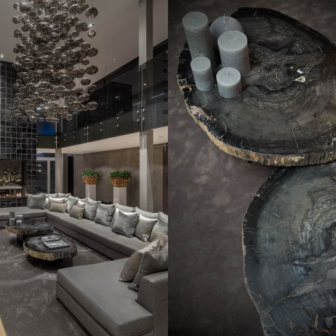 Modern petrified wooden design coffee table, a contemporary use of natural materials, made exclusively by nature.